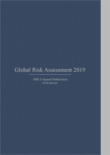 Global Risk Assessment 2019
